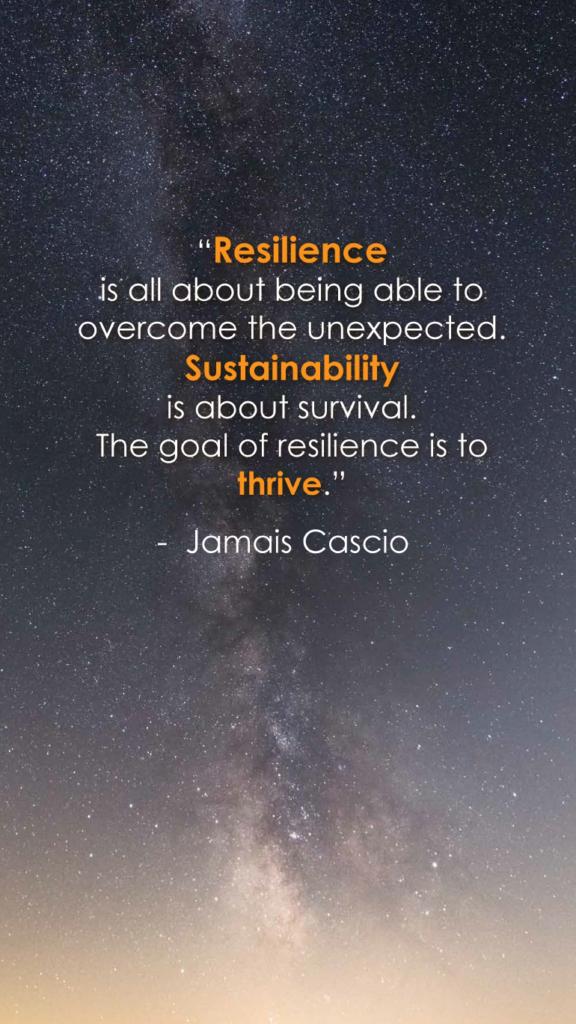 Jamais Cascio resilience quotes