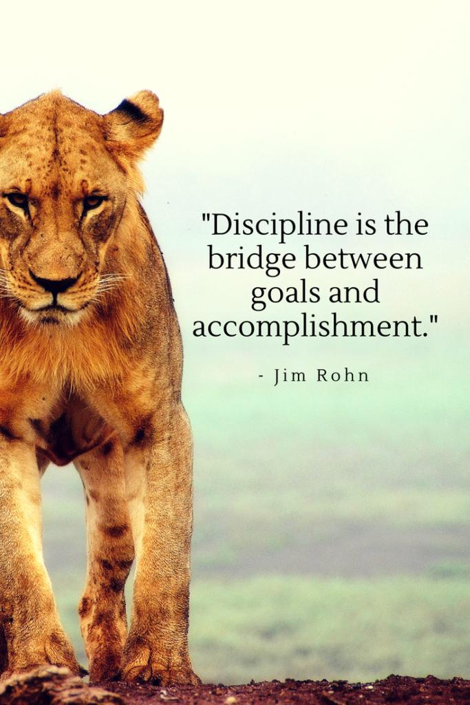 Jim Rohninspirational quotes